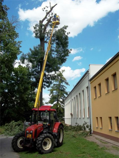 Prořezávání stromu z lávky