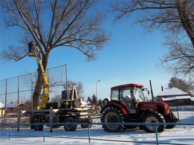 Pruklest stromu v zimě